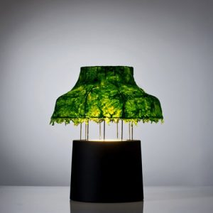 Seaweed Lamp Shade - Amazing uses of seaweed