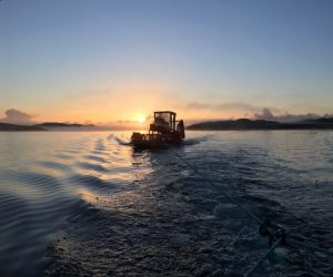 Sustainably wild harvested seaweed in Scottish sea lochs, in the Outer Hebrides, organic, kosher, vegan